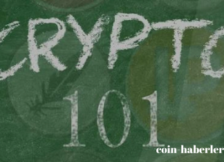 kripto para terimleri